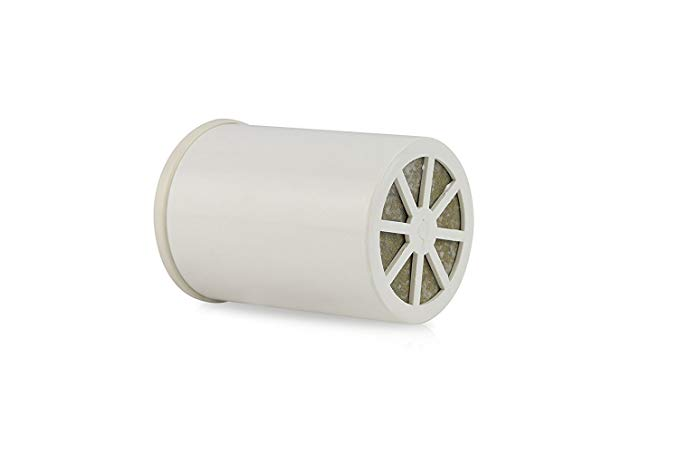 APEX RF-7010 Replacement Shower Filter Cartridge